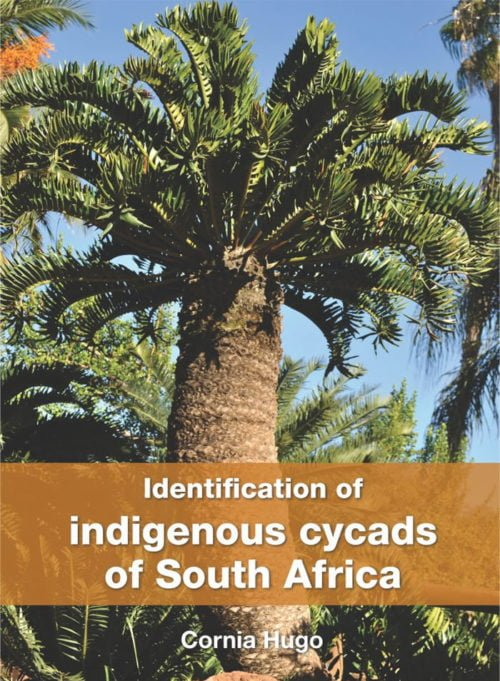 Identification of Indigenous Cycads of South Africa book cover